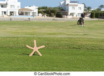 tee, marcador, en, un, campo de golf, con, golfista