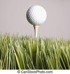 Teed up golf ball.