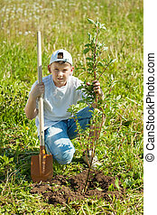 Teen boy setting tree - Teen boy with spade setting tree ...