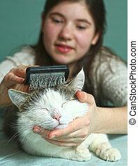 teen girl brushing cat close up photo