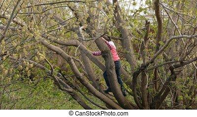 teen girl climbed a tree
