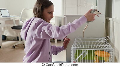 Teen girl playing with domesticated rat at home - Teen girl ...