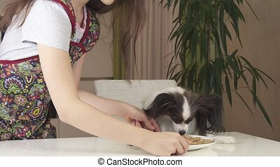 Teen girl with dog Papillon prepare cookies, treat...