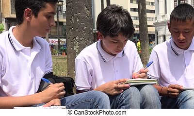 Teen Male Students Studying