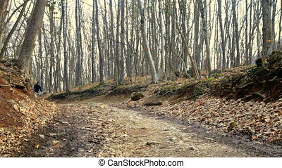 Teen rides a bicycle in the autumn forest