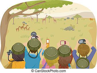 Teen Safari Tours