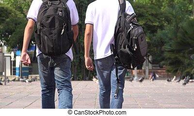 Teen School Boys Walking