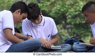 Teen Students Doing Homework