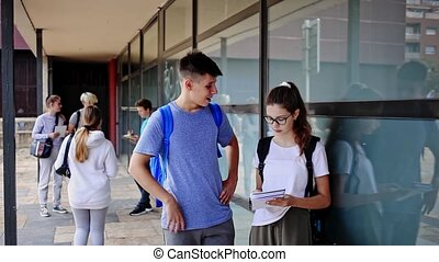 Two teenage students exchange lectures near the college building on a summer day