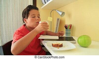 Teenage boy doing his homework and eating cake - Portrait of...