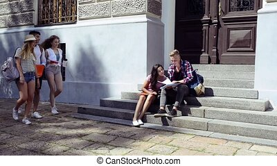 Teenage students in front of university talking. - Group of...