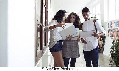 Teenage students in high school hall, talking. - Group of...