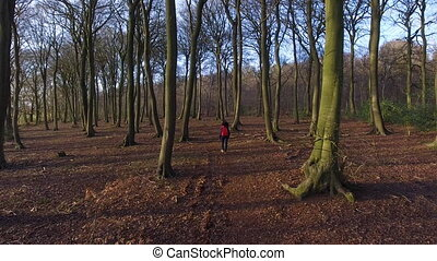 Teenage young woman hiking with red backpack in forest...