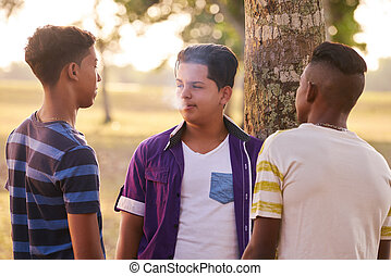 Teenagers In Park Boy Smoking Electronic Cigarette