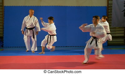 Teenagers martial arts practitioners performing kata at the...