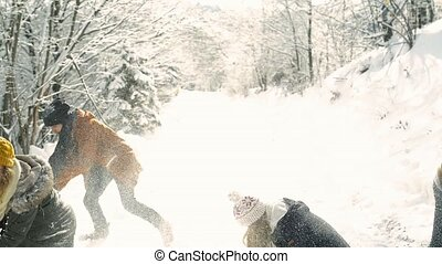 Teenagers on a walk in winter nature.