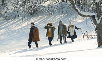 Teenagers on a walk in winter nature. Boys and girls walking...