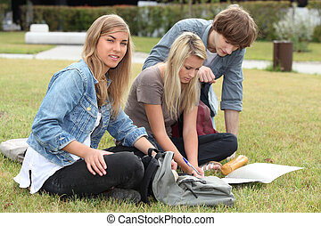 Teenagers sitting on grass