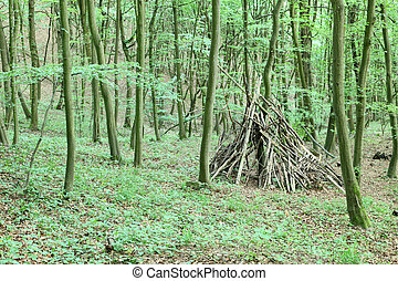 Teepee in green forest