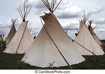 Teepees in a traditional setting of a grass meadow