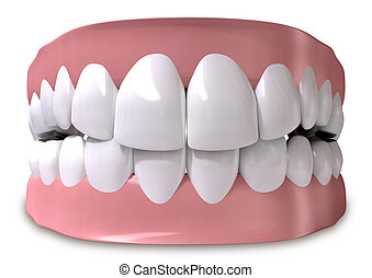 Teeth And Gums Closed - A set of closed human teeth set in...