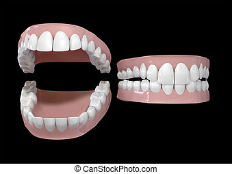Teeth And Gums Open and Closed - Two different sets of human...