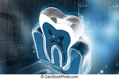 Teeth cross section - Digital illustration of teeth cross...