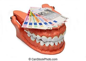 Teeth model