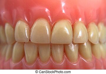 teeth posthesis background