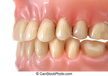 teeth prosthesis background - detail of teeth prosthesis as...
