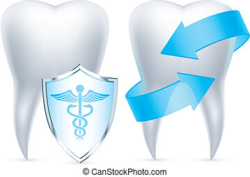 Teeth protection. - Two teeth protected by shield and...