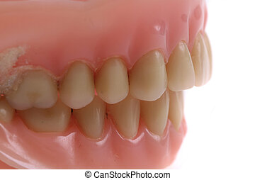 teeth prothesis background - teeth prothesis texture as nice...