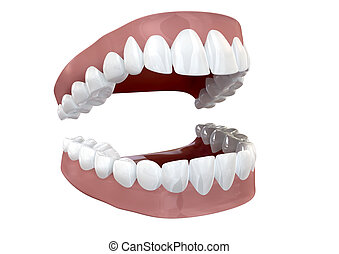 Teeth Set Open Isolated - Seperated upper and lower sets of...