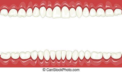 Teeth - Funny background with cartoon teeth, vector...