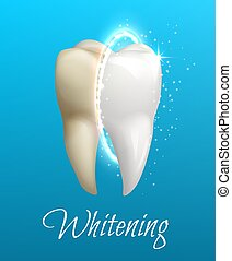 Teeth whitening concept with clean and dirty tooth
