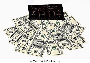 tegnebog, dollare, bundtet