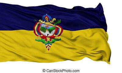 Tegucigalpa City Isolated Waving Flag