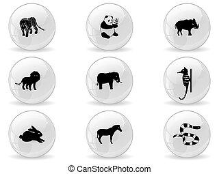 teia, 3, botões, ícones animais