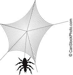 teia aranha