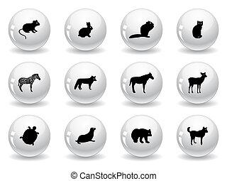 teia, botões, ícones animais