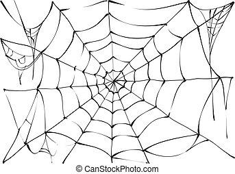 teia, branca, pretas, aranha, fundo