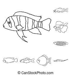 teia, diferente, jogo, esboço, ícones, peixe, cobrança, bitmap, aquário, design., estoque, marinho, símbolo, tipos, illustration.