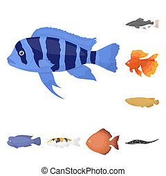 teia, diferente, jogo, illustration., ícones, peixe, cobrança, bitmap, aquário, caricatura, design., marinho, símbolo, tipos, estoque