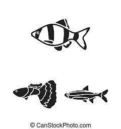 teia, diferente, jogo, illustration., ícones, peixe, cobrança, bitmap, pretas, aquário, design., marinho, símbolo, tipos, estoque