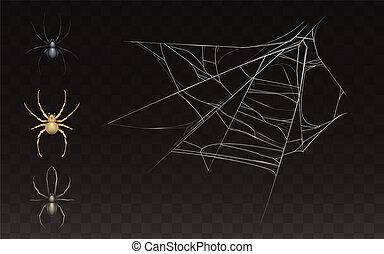 teia, vetorial, aranha, cobrança, realístico