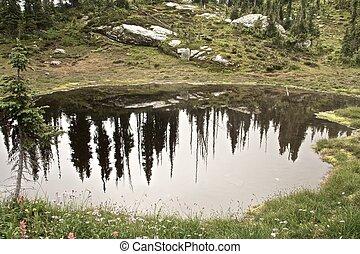teich, berg, reflexionen, unheimlich