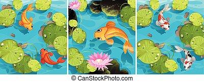 teich, schwimmender, szene, fische