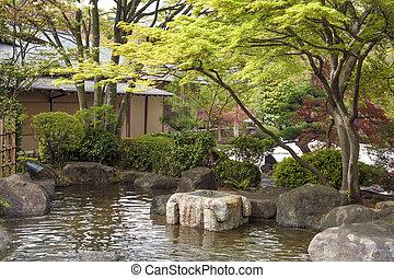 teich, zen, japanischer garten