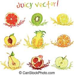 tekening, set, snede, vruchten
