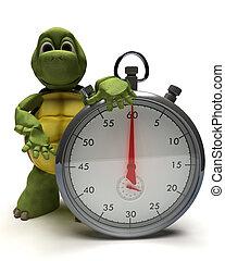 teknősbéka, noha, egy, hagyományos, króm, megáll karóra